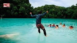 帛琉玩生態