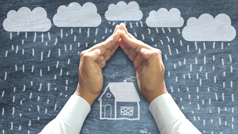 保費比房子燒掉損失還貴,為什麼要買保險?投資哲學家分析「風險管理」本質