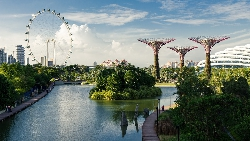 有機會拿到薪資條件好、福利最好的簽證,反而要小心!想留新加坡必懂的事