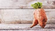 賣相不佳的蔬果,也是好生意?看這美國新創如何靠賣「醜食」,吸引上億募資