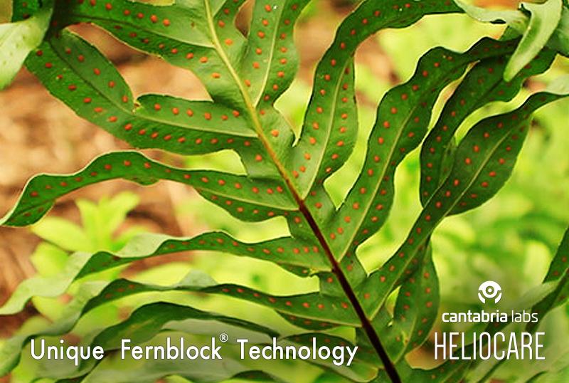 只聽過物理、化學性防曬?哈佛醫學研究「植物性Fernblock」光防護成分 成為全球六成以上的銷售冠軍
