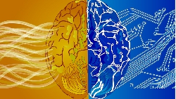 數位轉型過程,要讓員工換腦袋?「教練」比「教育訓練」重要
