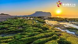 韓國夏威夷濟州島享樂去 體驗民主聖地光州新風貌