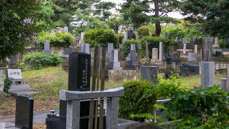 愛模型的宅男,相揪死後當墓友!老不等於孤獨,日本興起「同好共同墓」趨勢